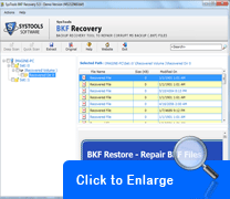 BKF Recovery Tool Screenshot